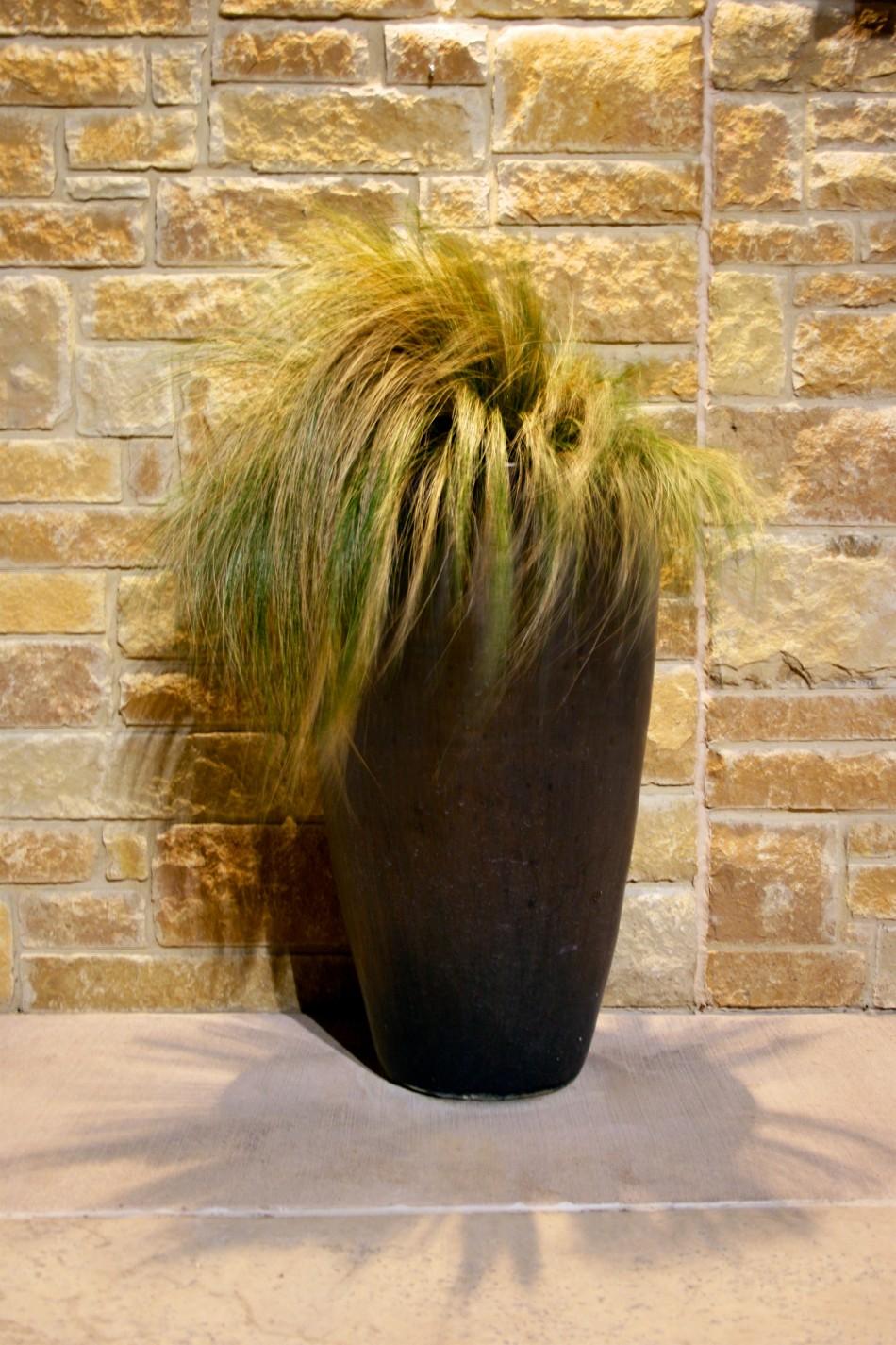 Warhol Grass