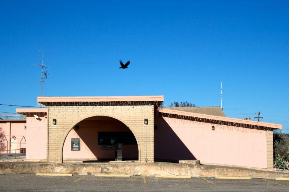 Vulture Bank