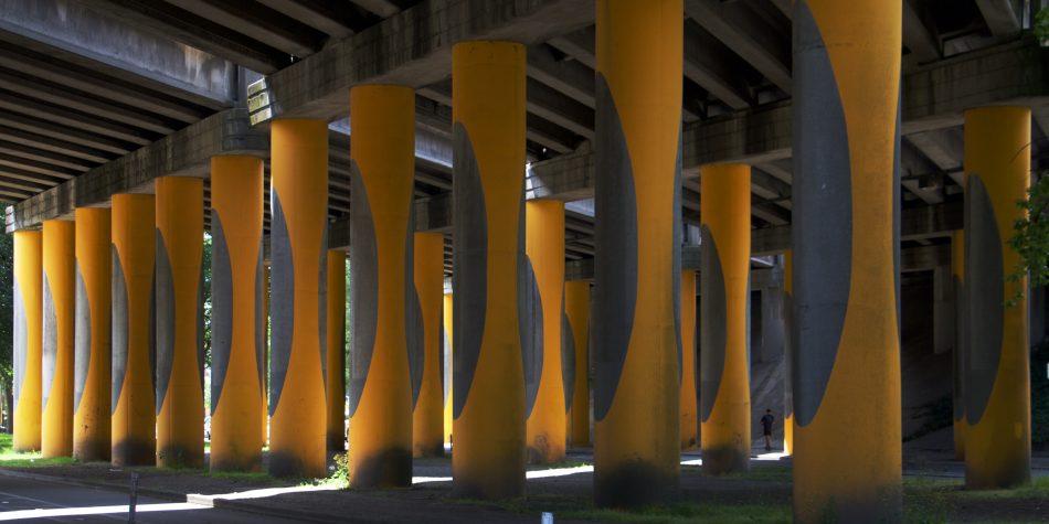 Legs of Yellow