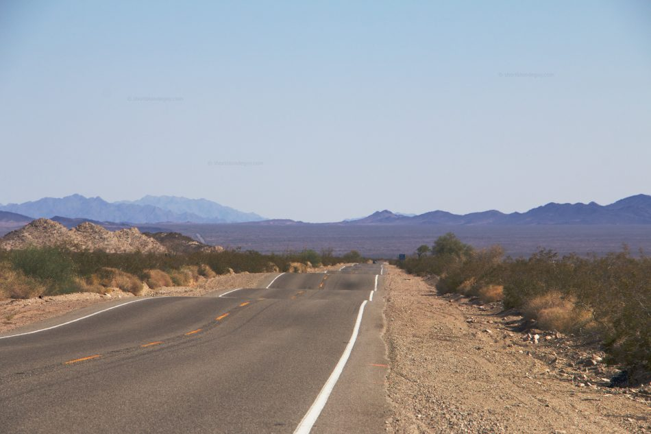 Mojave Dips